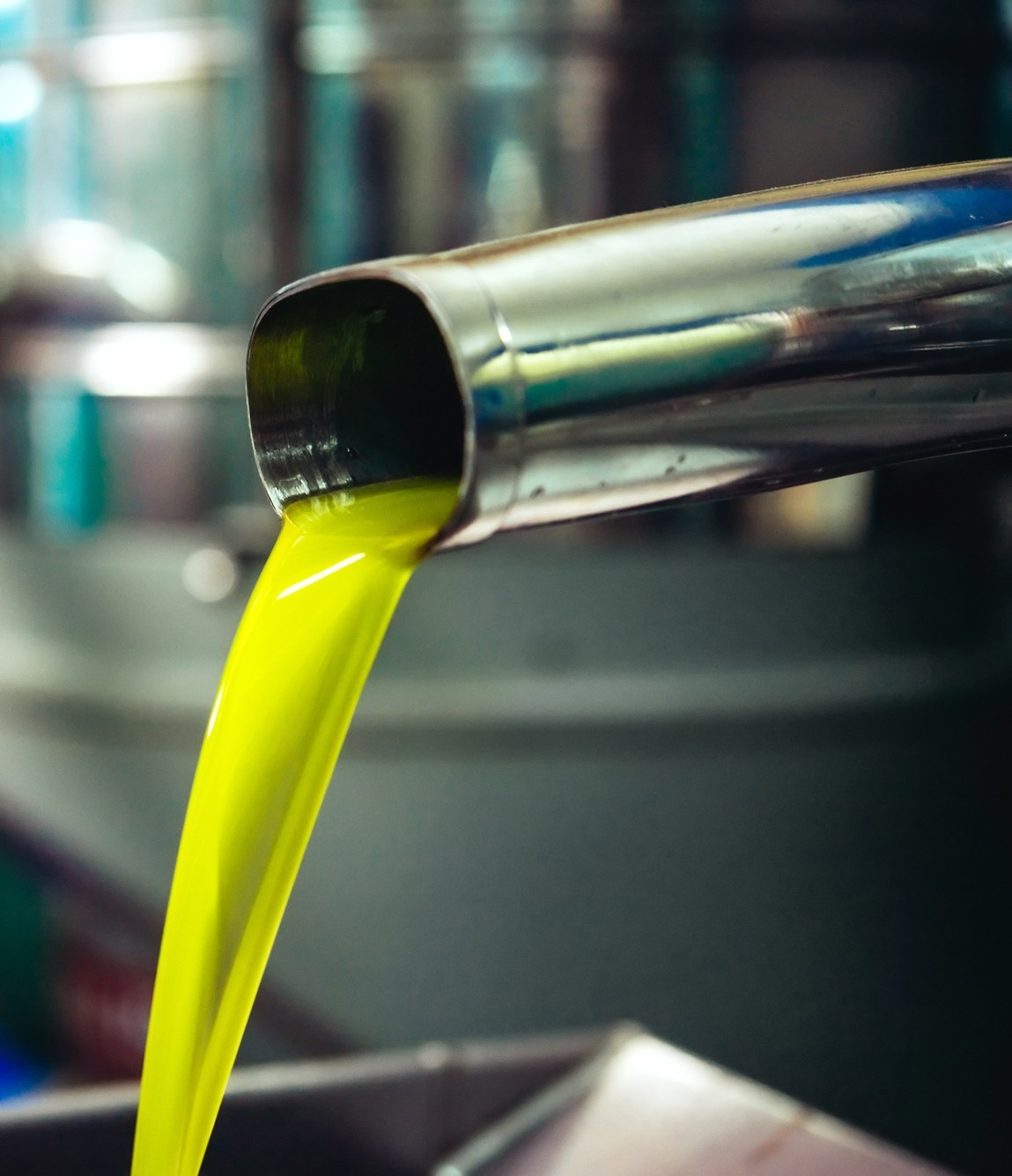 California Olive Oil Council case study image