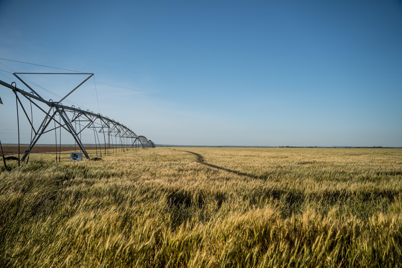 Open field being irrigated