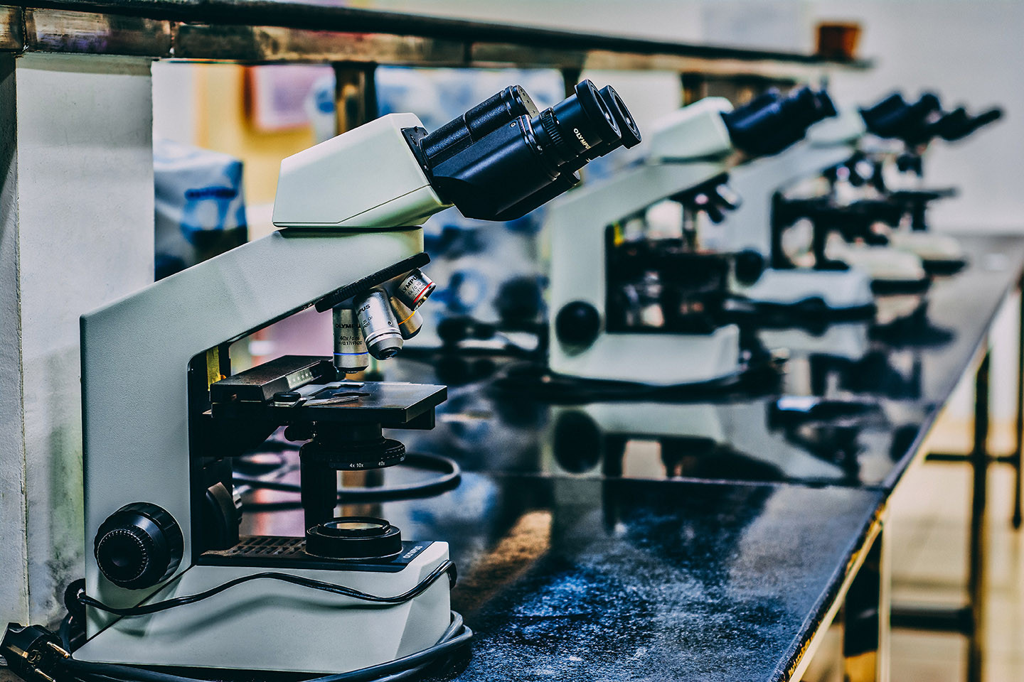 Row of microscopes on a lab bench